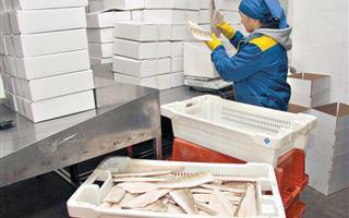 Рыбы без костей не бывает: бизнесмену из Казахстана во время карантина не нужна финансовая помощь